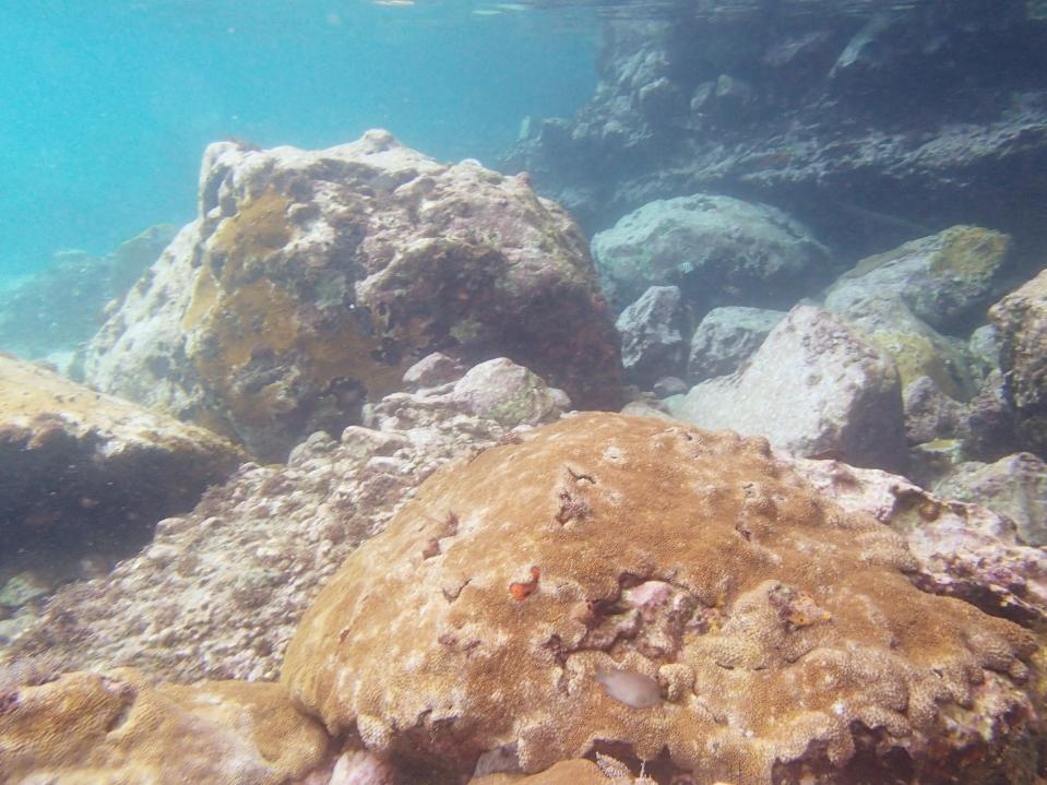 sous l'eau 1 anse dufour