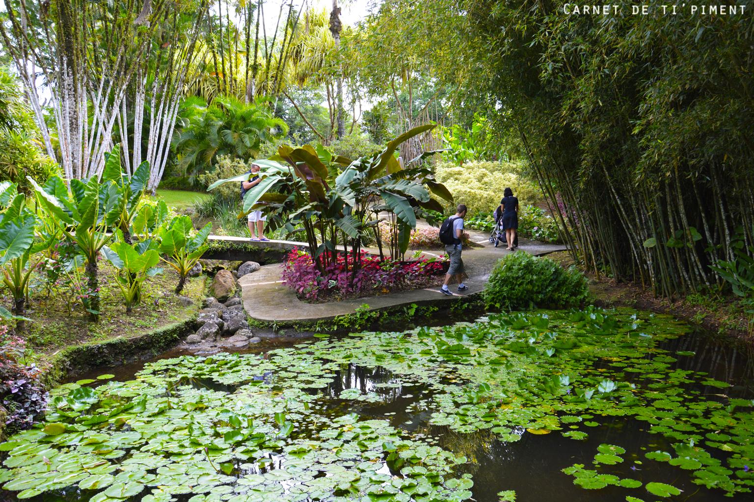 balata-jardin-japonais