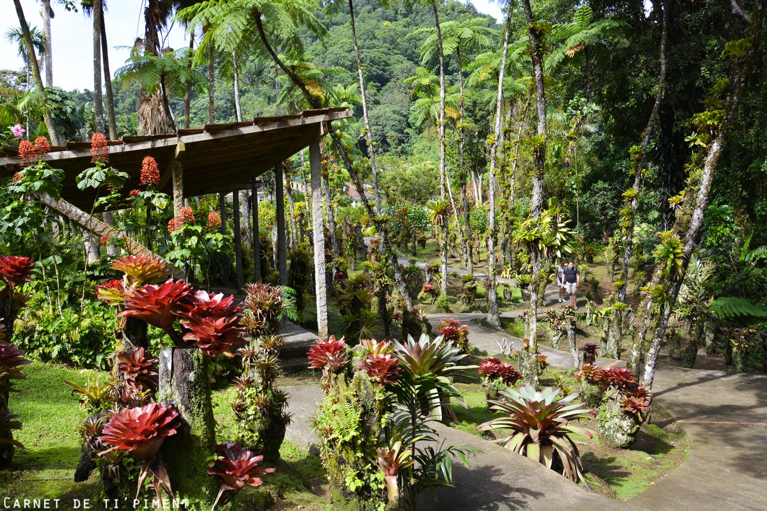balata-jardin