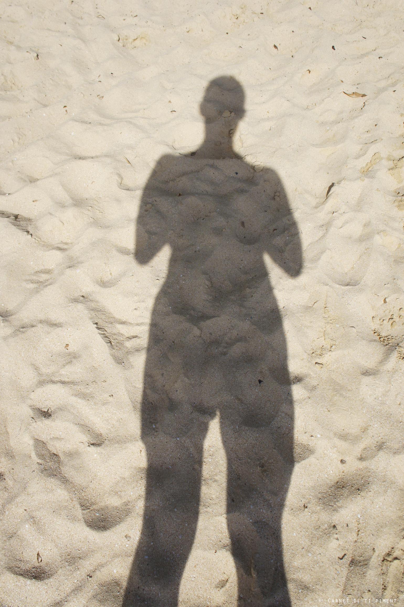 saline-sable-silhouette
