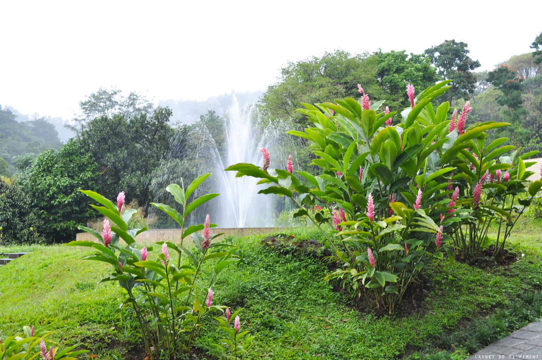 emeraude-fontaine