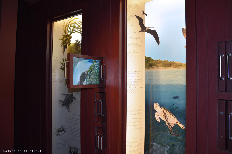 emeraude-musée-faune-flore