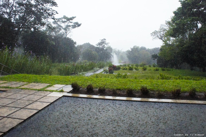 emeraude-sous-la-pluie